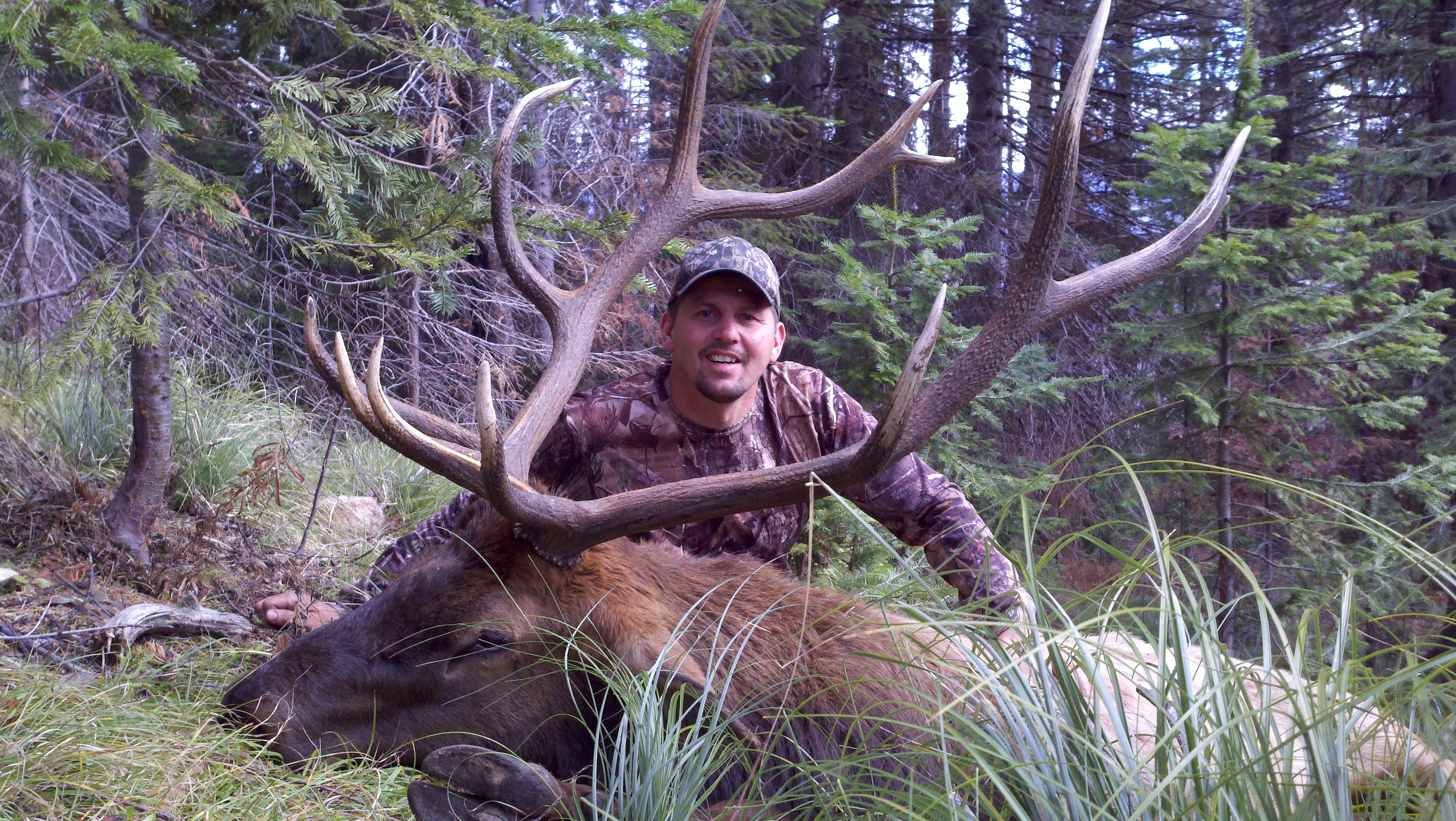 Don Corrigan's 2010 elk
