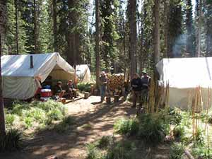 wilderness pack trips