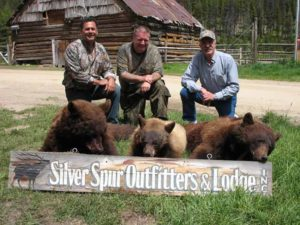 Guided bear hunting in Idaho from Silver Spur Lodge