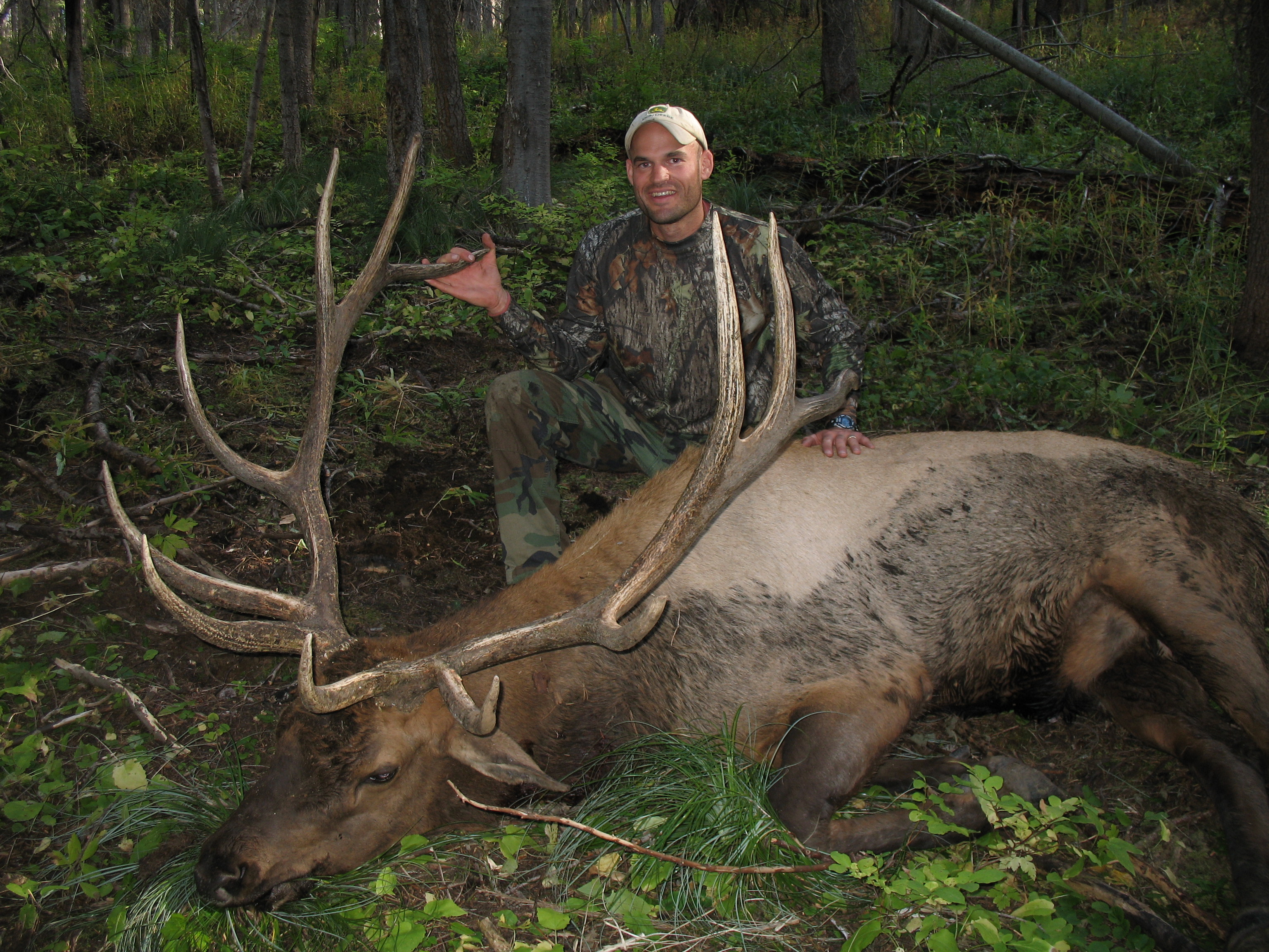 6X6 elk Matt took in 2010