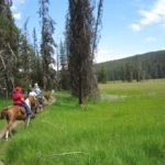 backcountry horseback riding