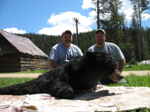 Guided bear hunting in Idaho