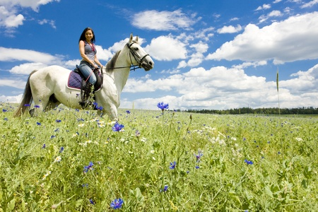Horseback Riding Tips