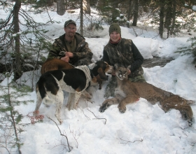 What You Need to Know About Hunting Mountain Lions in Idaho