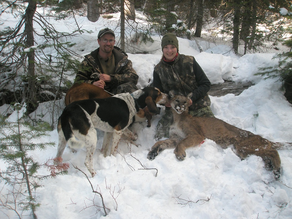 Mountain Lion Hunting in Idaho