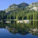 Take a Wildlife Trip with Silver Spur Outfitters and Lodge