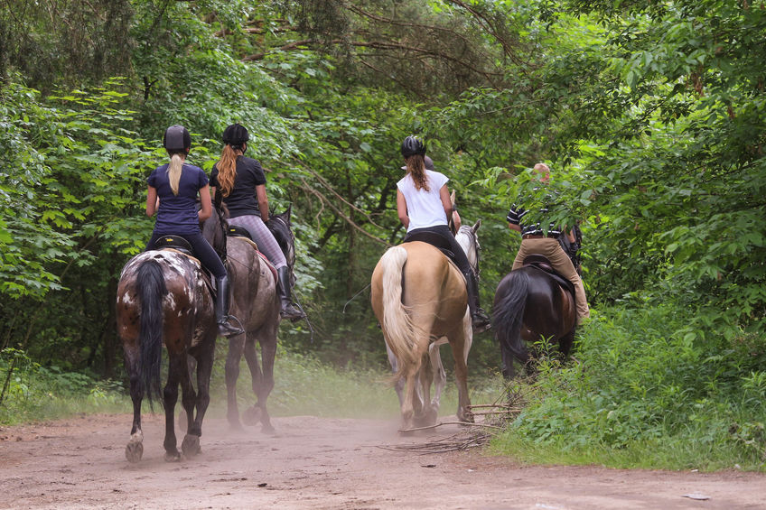 4 Helpful Tips for Your First Time Horseback Riding